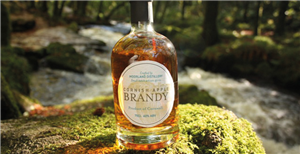 Moorland Apple Brandy 50cl (20%)